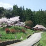 立神峡 桜と星空の撮影会
