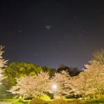 立神峡 「桜と星空の撮影会」 参加レポート